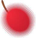 Rambutan  fruit icon Stock Image
