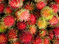 Rambutan is a tropical and sweet flavored fruit that is very popular in southeast asia Stock Photos