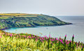 Rame head whitsand bay cornwall coast in hdr with vivid colours Royalty Free Stock Photography