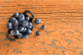 Ramekin of fresh ripe blueberries view from above a ceramic on a grungy wooden table with peeling red paint for a healthy snack Royalty Free Stock Photography