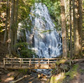 Ramona Falls by the Wooden Bridge in Oregon Stock Photography