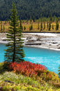 Rampart pond autumn colors canadian rockies Royalty Free Stock Photo