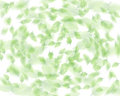 Random leaf pattern Stock Images