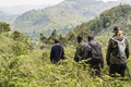 Ranger and tourist in Bwindi National Park Royalty Free Stock Photo