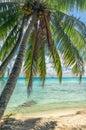 Rangiroa atoll french polynesia paradise view of Royalty Free Stock Image