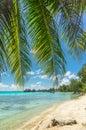 Rangiroa atoll french polynesia paradise view of Stock Images