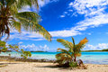 Rangiroa atoll tuamotu islands french polynesia Royalty Free Stock Images