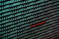 Ransomware or Wannacry text and binary code concept from the desktop computer screen, selective focus, Security Technology Royalty Free Stock Photo