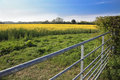 Rapeseed field and farm gate Royalty Free Stock Photo