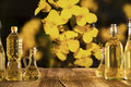 Rapeseed oil concept. Royalty Free Stock Photo
