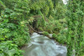 Rapid river in Jamaica Royalty Free Stock Photo