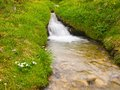 Rapids on mountain stream in spring meadow of alps cold and rainy weather misty Stock Photos