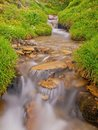 Rapids on mountain stream in spring meadow of alps cold and rainy weather misty Royalty Free Stock Photo