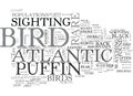 A Rare Bird Indeed For Bird Watchers The Atlantic Puffin Word Cloud Royalty Free Stock Photo