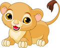Raring  Lion Cub Royalty Free Stock Images