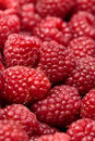 Image : Raspberries  blackberries the