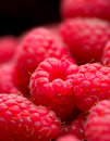 Raspberries Stock Photos