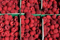 Raspberries background Stock Images