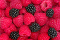 Raspberries background Royalty Free Stock Photos