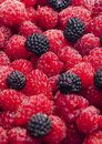 Raspberries and blackberries Royalty Free Stock Photos