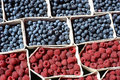 Image : Raspberries and Blueberries  boxes strawberries