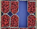 Raspberries in boxes at gramm for sale Royalty Free Stock Photos