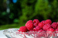 Raspberries closeup on in a glass bowl at green background Royalty Free Stock Photo