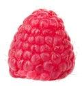 Raspberries fruits macro raspberry Royalty Free Stock Photo