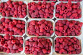 Raspberries in gramm boxes for sale Royalty Free Stock Photos