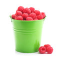 Raspberries in green bucket isolated on white Royalty Free Stock Photo