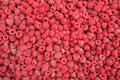 Raspberries hq stock photo of red Royalty Free Stock Photo
