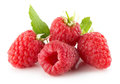 Raspberries isolated on the white background Royalty Free Stock Photo