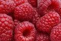 Raspberries macro Royalty Free Stock Photo