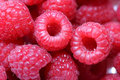 Raspberries, macro. Royalty Free Stock Photo