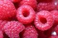Raspberries, macro. Royalty Free Stock Photo