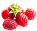 Raspberries objects on white background isolated Royalty Free Stock Photography
