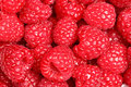 Raspberries - raspberry texture background Royalty Free Stock Photography