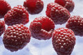 Raspberries ripe red on ice Stock Photography