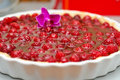 Raspberries tart and curd Stock Images