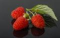 Raspberries whit leaf on black background Royalty Free Stock Photo