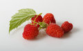 Raspberries whit leaf on white background Stock Photos