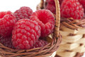 Raspberry baskets Stock Photography