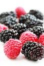 Raspberry and blackberry Stock Photo