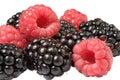 Raspberry and blackberry Royalty Free Stock Photos