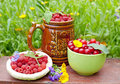 Raspberry and cherry Stock Photography