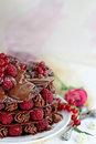 Raspberry chocolate dessert summer french Stock Photos