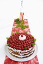 Raspberry cream cake on table runner and raspberry wine Royalty Free Stock Photo