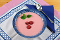 Raspberry cream soup Royalty Free Stock Photo