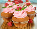 Raspberry cupcakes close up on a brown table Royalty Free Stock Photo