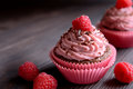 Raspberry cupcakes sprinkled with chocolate on dark background Royalty Free Stock Photo